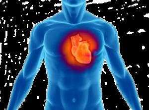promo cardiologica 17